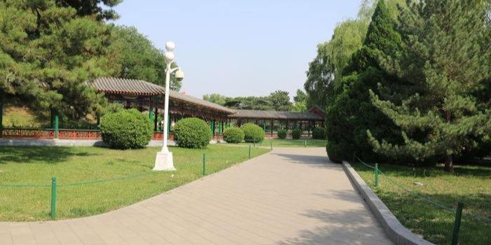 安徽舒城某公园视频监控系统工程
